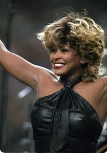 Tina Turner. Crédito: Furinsider.com